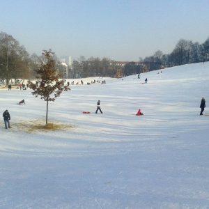 Schlittenfahren im Luitpoldpark